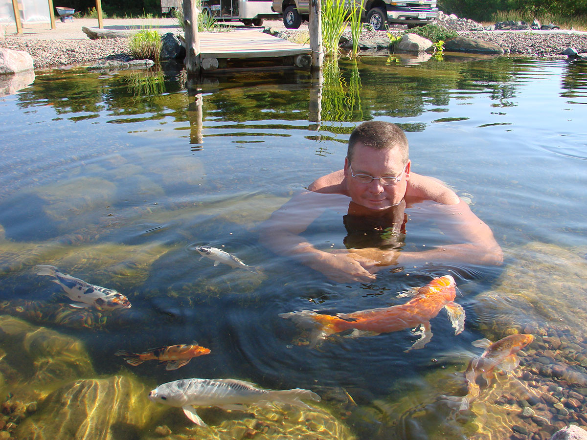 swimming with koi