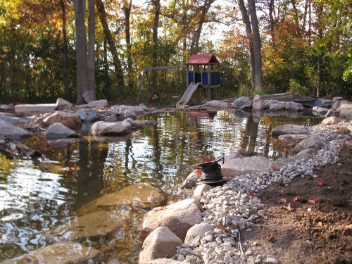 Fall Pond Maintenance